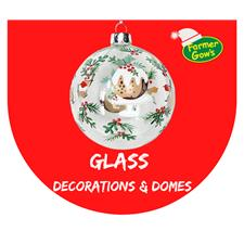 Glass - Decorations & Domes