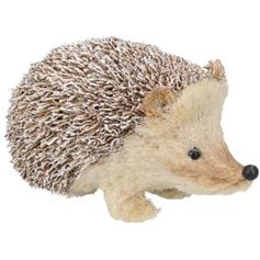 Snowy Bristle Hedgehog