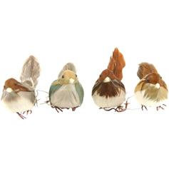 Feather Bird - set of 4